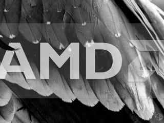 AMD Zen新品CES20