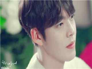 韩国明星 韩国明星图片 韩国人气明星