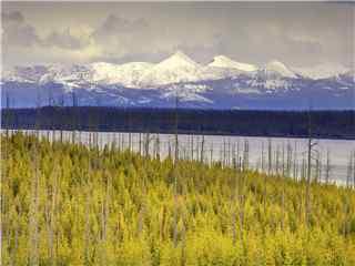 壮丽美丽雪山风景高清壁纸 草原雪山风景