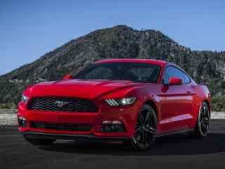 福特野马最新肌肉跑车 福特野马眼镜蛇 福特野马跑车