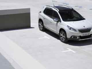 法国标致汽车壁纸 东风标致308 东风标致3008