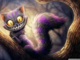 卡通猫咪壁纸 手绘猫咪图片 猫咪插画壁纸 猫咪图片