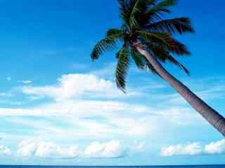 马尔代夫旅游 唯美马尔代夫海滩风光 马尔代夫图片