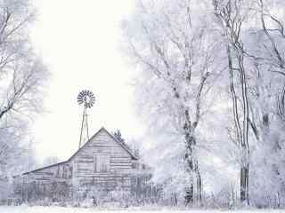 冬日雪景图片 唯美雪景高清桌面壁纸 阳光下雪景图片下载