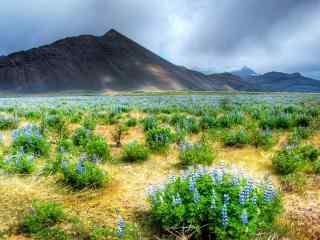 深山山谷风景图片 山谷优美风景高清壁纸 山峡山谷图片下载