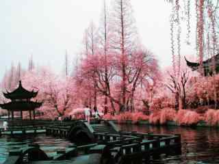 西湖_杭州西湖、西湖十景、音乐喷泉_赞美西湖的古诗诗句风景壁纸