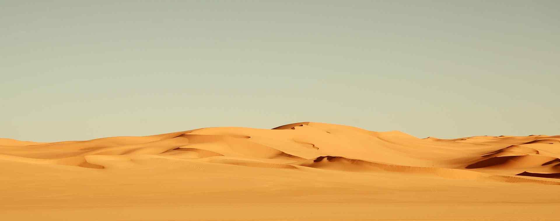 沙漠_撒哈拉沙漠_沙漠之花_巴丹吉林沙漠_沙漠壁纸_沙漠高清图片大全