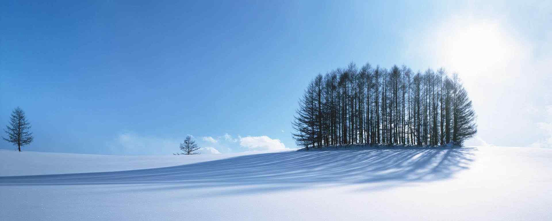 北海道_北海道雪景_北海道花田_函馆_百万夜景_小樽图片壁纸