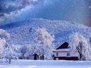 冬天的景色_雪景、梅花、冰雕、美女_冬天风景桌面壁纸_冬天风景手机壁纸_风景壁纸