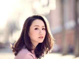 杨蓉_杨蓉图片_杨蓉写真图片_杨蓉演过的电视剧图片