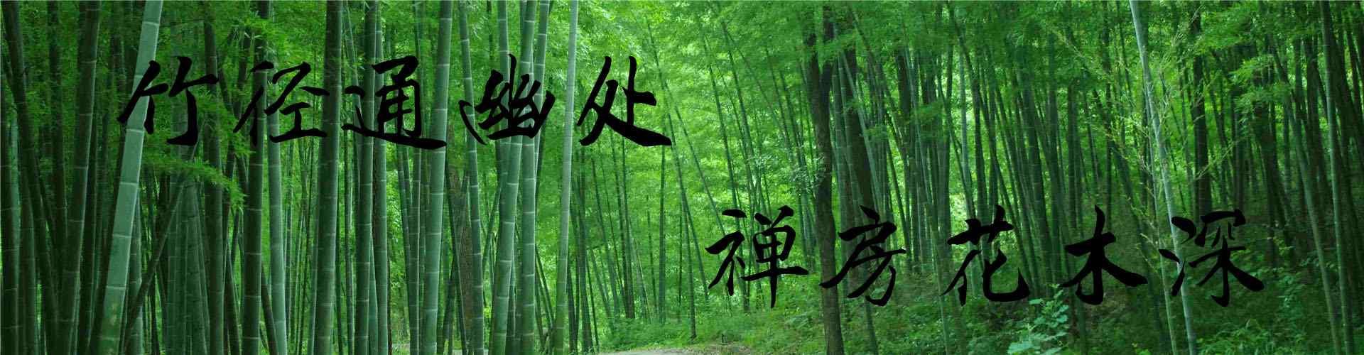 竹林风景_竹林风景图片_竹林桌面壁纸、手机壁纸_小清新护眼壁纸_风景壁纸