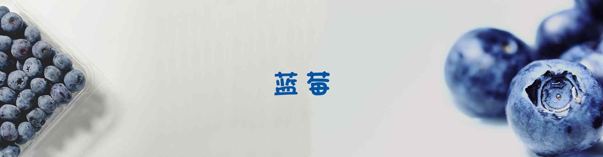 蓝莓_蓝莓图片_蓝莓蛋糕图片_蓝莓创意图片_小清新蓝莓图片_蓝莓树图片_水果图片壁纸