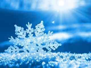 雪花壁纸_雪花图片_雪花高清桌面壁纸_雪花素材图片_风景壁纸