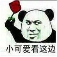 最新熊猫头表情包