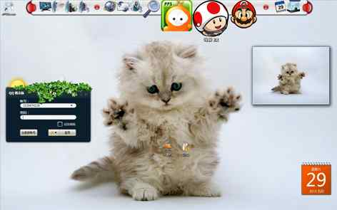 可爱猫咪简洁桌面