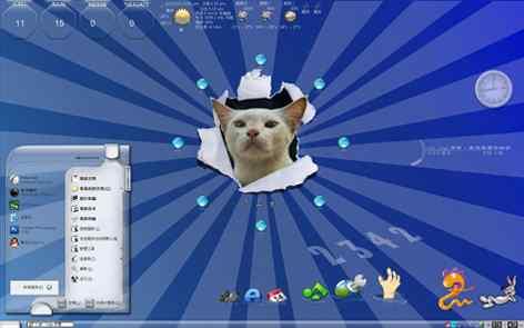 可爱小猫咪透明主