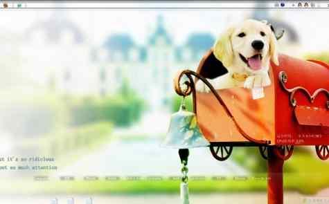可爱狗狗邮箱桌面