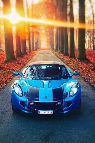 蓝色概念跑车林荫