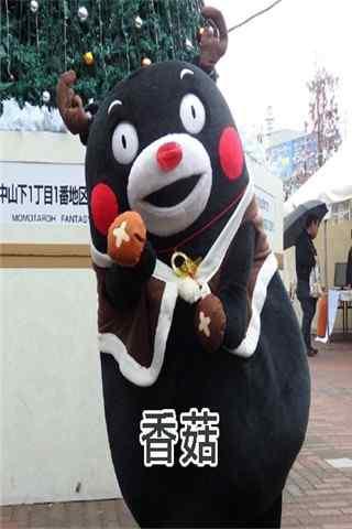 可爱熊本熊表情包之香菇手机壁纸