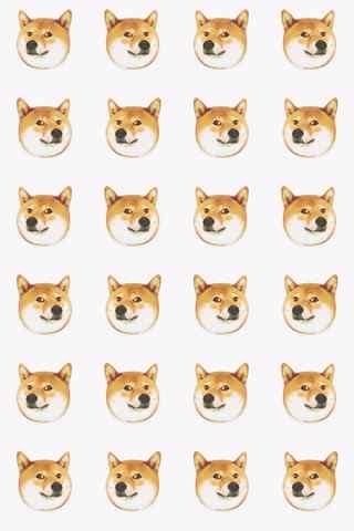魔性创意柴犬表情包之手机壁纸