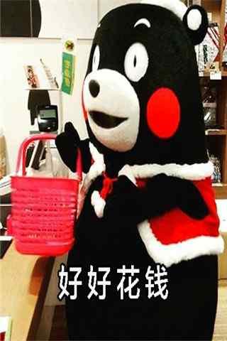 """可爱熊本熊表情包之""""好好生活""""系列手机壁纸图集"""
