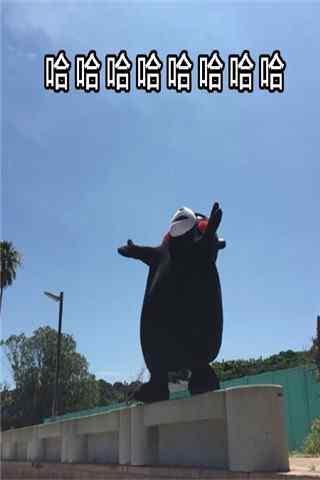 熊本熊表情包之仰天大笑手机壁纸