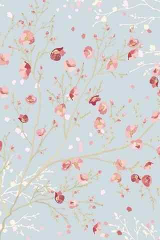 创意唯美花朵手机