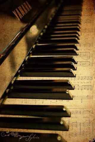 钢琴曲谱图片唯美