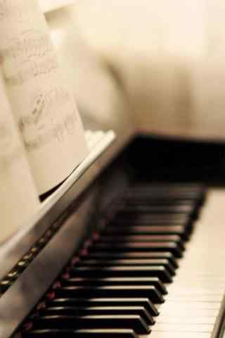 唯美钢琴黑白键图
