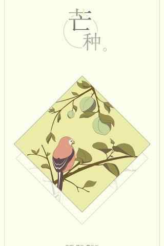 芒种之创意手绘手机壁纸