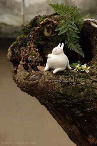 创意毛毡怀孕小兔子手机壁纸