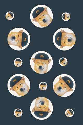 萌萌哒可爱小柴犬手机壁纸