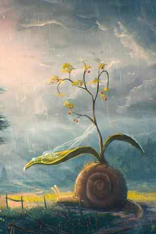 创意摄影蜗牛图片手机壁纸
