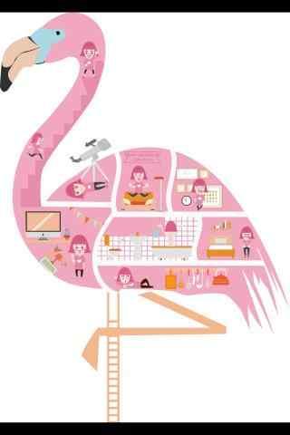 创意设计火烈鸟图片手机壁纸