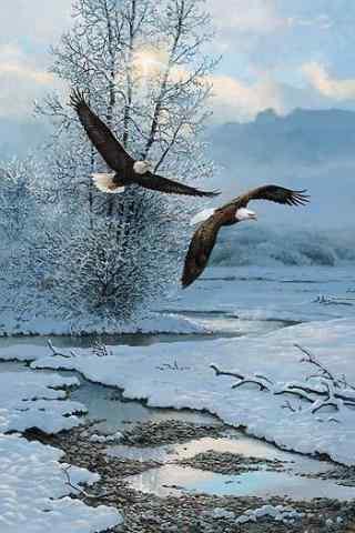 翱翔在冬季雪山间的老鹰图片手机壁纸