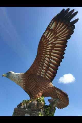 老鹰雕塑图片手机
