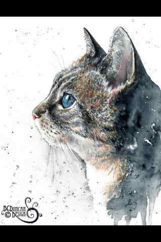 萌萌哒猫咪手绘手机壁纸