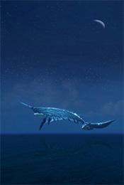 飞行的独角鲸清新