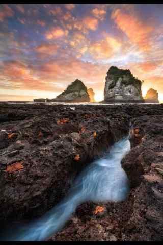 新西兰唯美海星岩手机壁纸