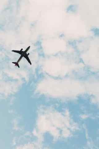 天空中的飞机蓝天