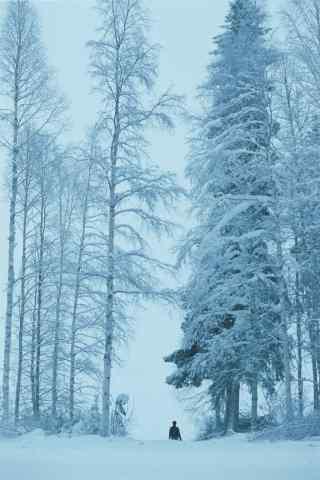 一个人看风景北欧浪漫山林雪景手机壁纸