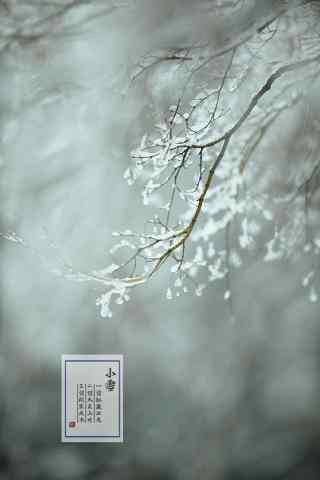 二十四节气之小雪风景手机壁纸(5张)