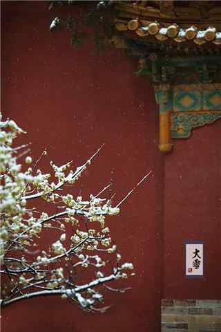 二十四节气之大雪北京故宫风景手机壁纸(6张)