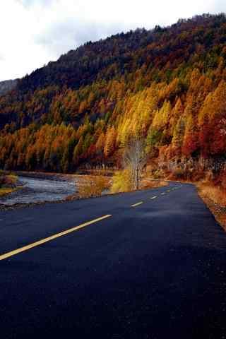 长白山唯美秋景图片手机壁纸下载