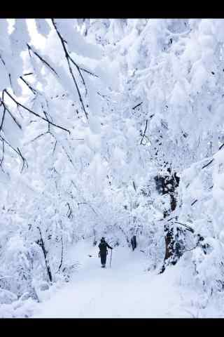 冬日峨眉山雪景手机壁纸