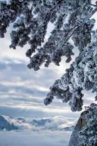华山美丽雪景手机壁纸