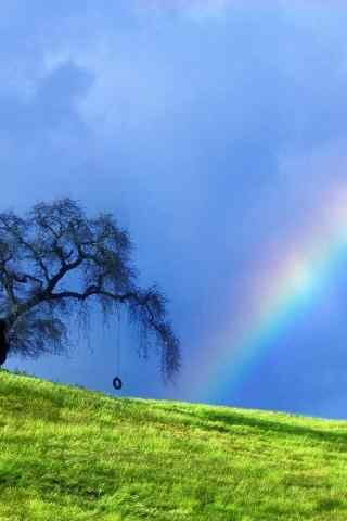 雨后初晴美丽彩虹手机壁纸
