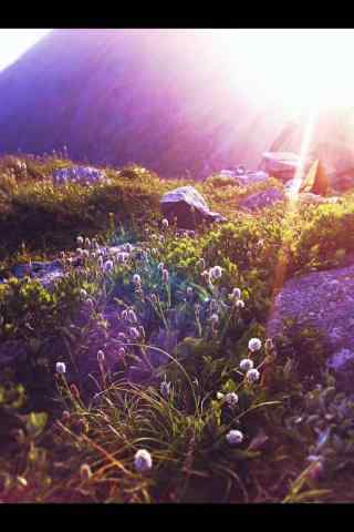 太白山迷人自然风景手机壁纸