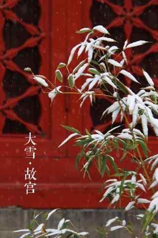 小清新文艺雪景之北京故宫