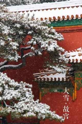 冬天风景之落雪的故宫手机壁纸
